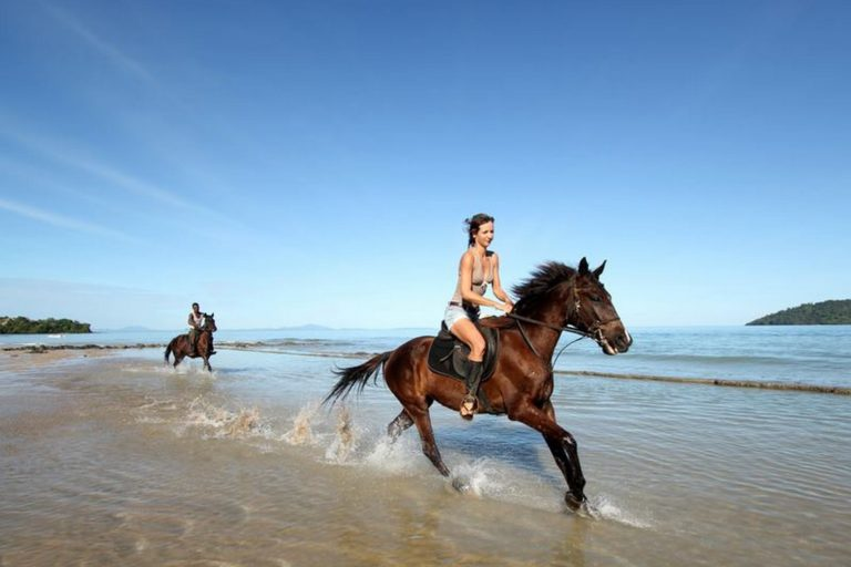 A horseback trip? It's possible !