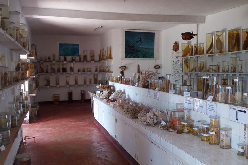 CNRO museum nosy be
