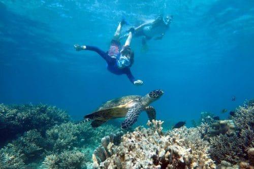 Snorkeling ficcanaso essere