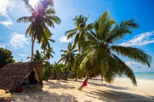 Beach and coconut tree in Nosy Iranja