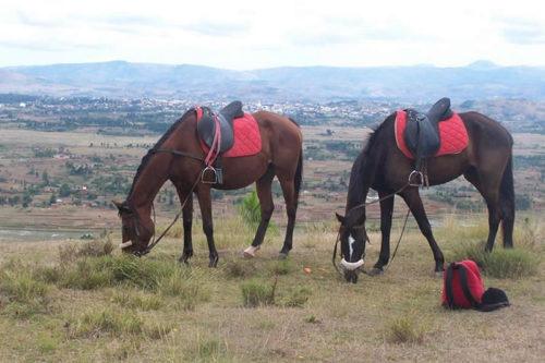 Jazda konna lub kolarstwo górskie w Antsirabe