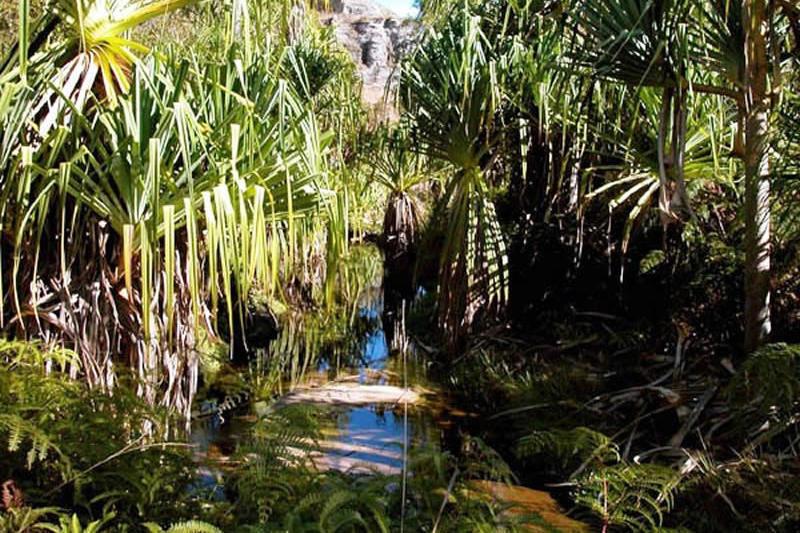 Wizyta w kanionie Rats w Parku Narodowym Isalo