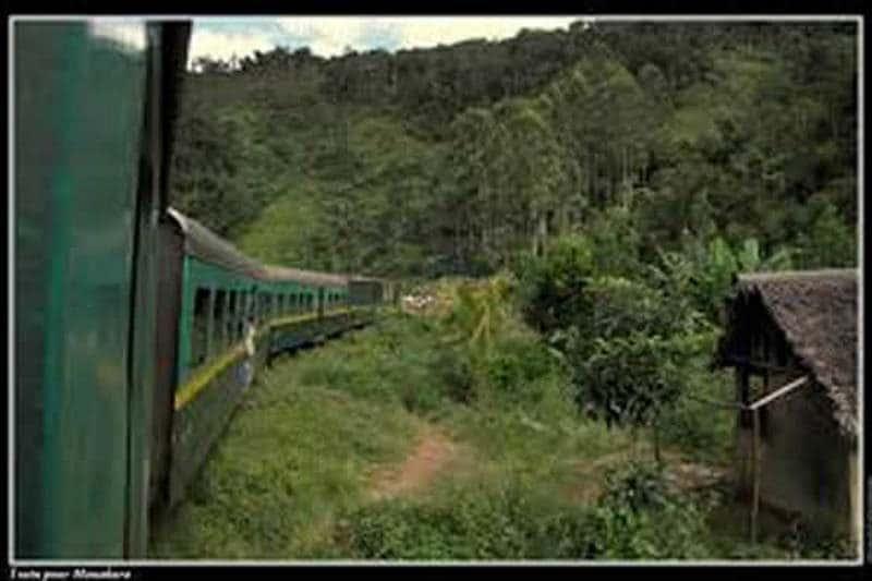 From Fianarantsoa to Manakara: discover the wonders of the east by train!
