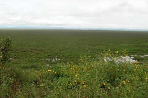 Facendo un'escursione intorno al lago Alaotra