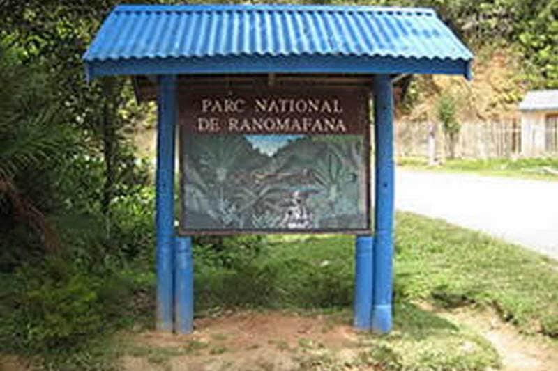 Parc national de Ranomafana, un site paradisiaque à visiter