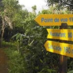 A walk in the heart of Ambodiriana forest in Sainte Marie