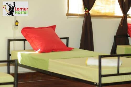 hotel lemur hostel w Antananarivo