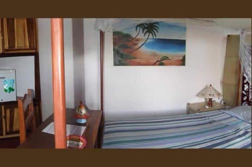 Bifaco w Diego-Suarez - Madagaskar