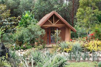 bungalow double grace lodge andasibe