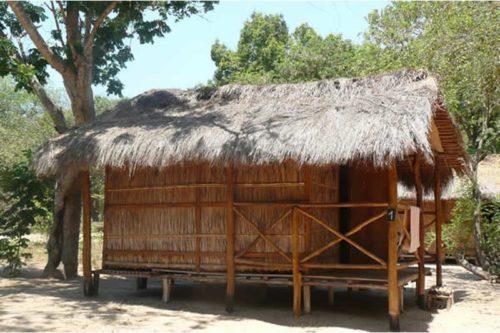 Camp Croco w Morondava - Madagaskar