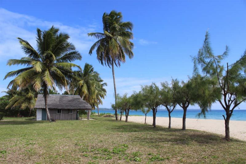 Cocoteraie robert à Sainte-Marie - Madagascar