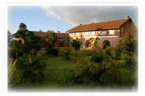 The kokoa garden in Antsirabe - Madagascar
