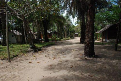 Le nirvana d'Ambila à Ambila Lemaitso - Madagascar