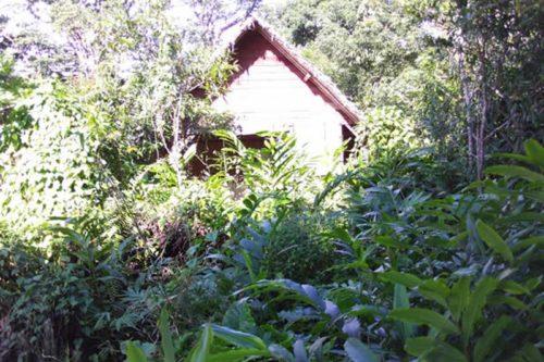 Hippocampus Lodge w Maroantsetra - Madagaskar