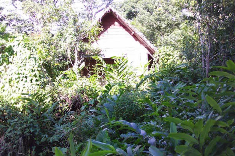 Lodge hippocampte à Maroantsetra - Madagascar