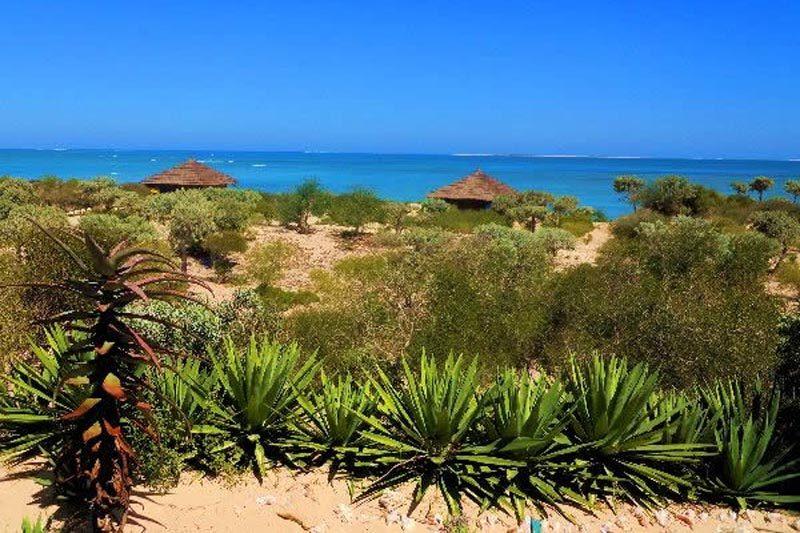 Longo vezo w Anakao - Madagaskar