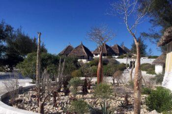 mini baobab salary bay hotel tulear