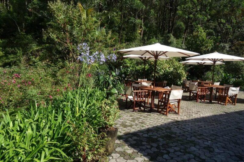 parasols terrasse vakona forest lodge andasibe