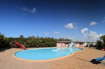 piscine chat o park ivato tana