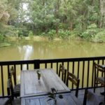 table restaurant vakona forest lodge andasibe