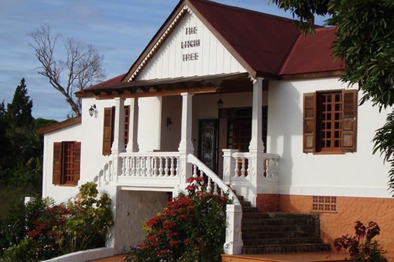 The litcho tree à Joffreville - Madagascar