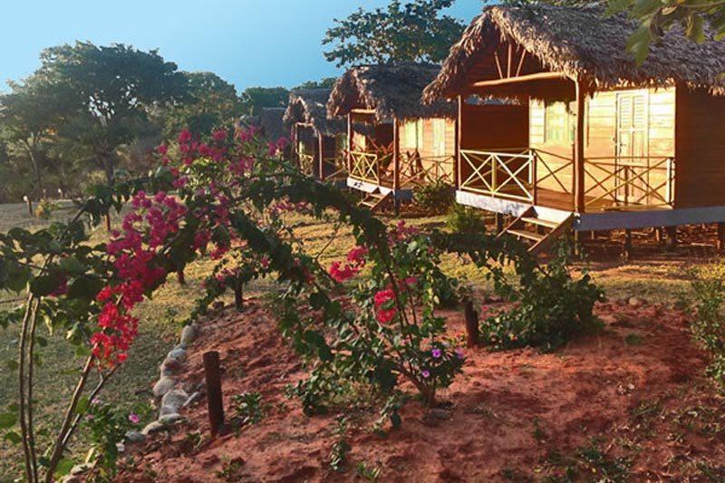 Villa nature santa cruz à Diego-suarez - Madagascar