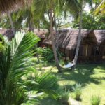 garden filled with coconut palm and the lodges of Vanio Lodge nosy be