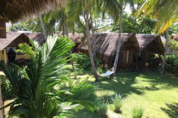 jardin remplie de cocotier et les lodges de Vanio Lodge nosy be