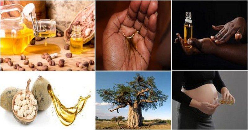 cura del baobab