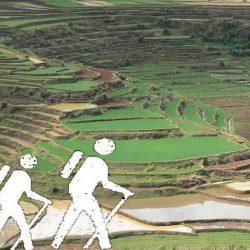 Spacery i wędrówki w Ambositra
