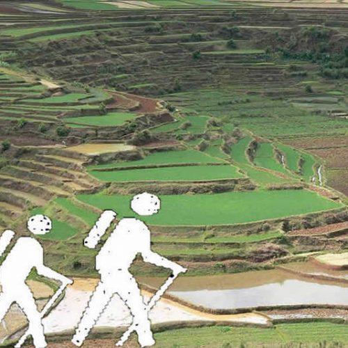 Passeggiate ed escursioni ad Ambositra