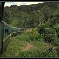 From Fianarantsoa to Manakara: discover the wonders of the east by train!