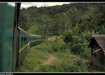 De Fianarantsoa à Manakara : découvrez les merveilles de l'est en train !