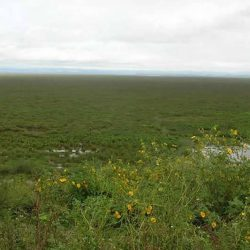 Wędrówki po jeziorze Alaotra