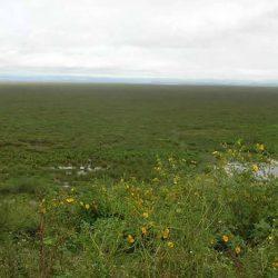 Hiking around Lake Alaotra