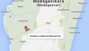 Le parc Zombitse Vohibasia