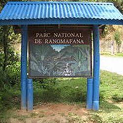 Ranomafana National Park, a paradise to visit