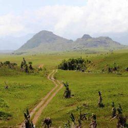 Discover the region of Vangaindrano