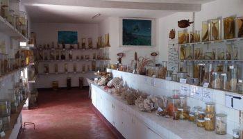 musée CNRO nosy be