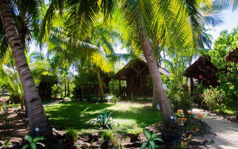 vue du jardin de l'hôtel Moya Beach à Nosy Be
