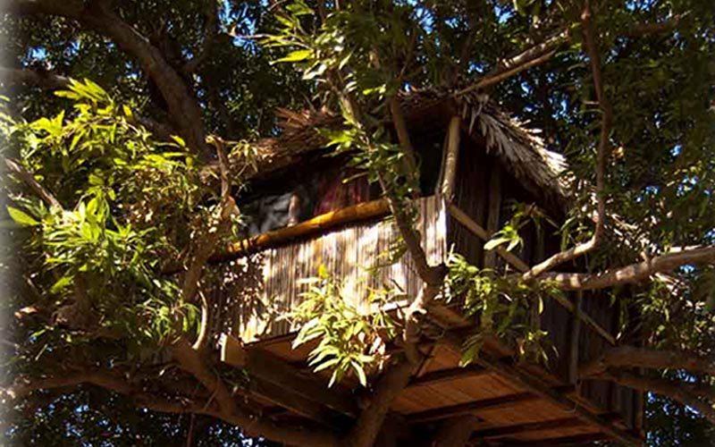 Jungle parck à Diego-suarez - Madagascar