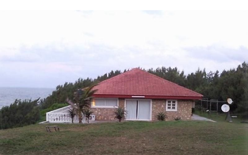 Drewno Libanona w Fort Dauphin - Madagaskar