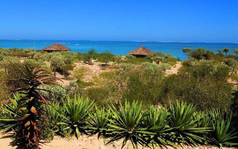 Longo vezo in Anakao - Madagascar