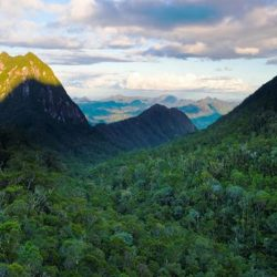 Odkrywanie Parku Narodowego Masoala