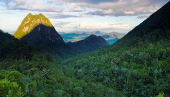 Alla scoperta del Parco Nazionale di Masoala