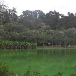 Visita del parco zoologico Tsimbazaza