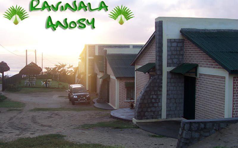 Ravinala anosy à Fort dauphin - Madagascar