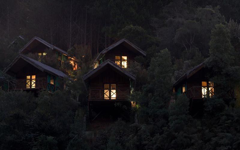 Sara forest camp à Anjozorobe